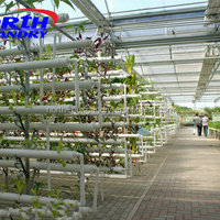 Commercial Greenhouses For Hydroponics Aquaponics And