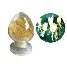 Anti-tumor 99% (HPLC) honeysuckle flower extract anti-virus chlorogenic acid honey suckle