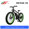 Powerful ebike conversion kit from China
