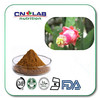 CN LAB supply best price cactus fruit,prickly pear extract powder