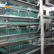 poultry farming equipment chicken cage breeding system