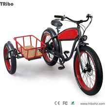 China factory wholesale hydraulic disk brake 4.0 tire industrial three wheel electric scooter
