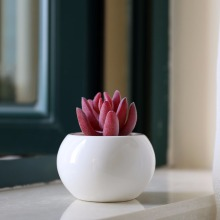 Hot Sale modern indoor mini white glazed ceramic flower pots wholesale