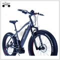 China new arrival li-ion battery mid drive ebike