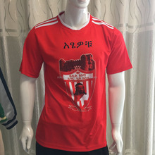 customized Soccer Jersey,sublimation soccer Jersery, Team Soccer Wear