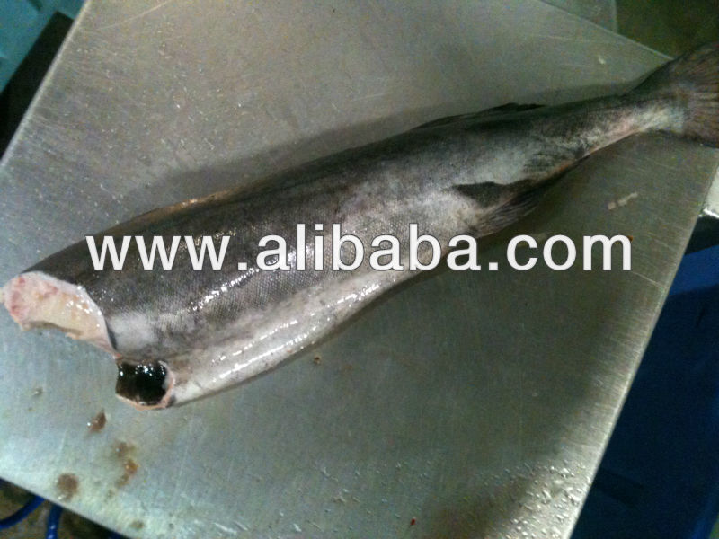 High Grade Black Cod/Sable Fish