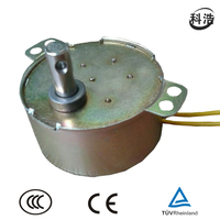 4W AC Synchronous Motor for electric fireplace(TUV, UL)