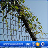 china factory cheap pvc coated chain link fence in anping