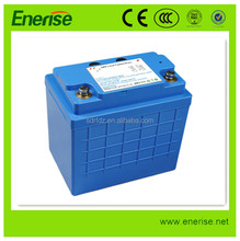 12V 100Ah Lithium Iron Phosphate Battery Pack / Lithium Battery / LiFePO4 Battery