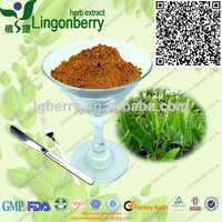 100% Natural Green Tea Extract, Tea Polyphenols 30%-98% from GMP factory