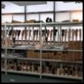 Confortável plástico moldado gel sustentação do tornozelo/gel estribo tornozelo wraps