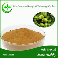 Manufatory noni extract powder/noni extract from fresh noni fruit