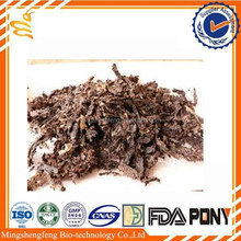 100% pure cheap bee propolis price