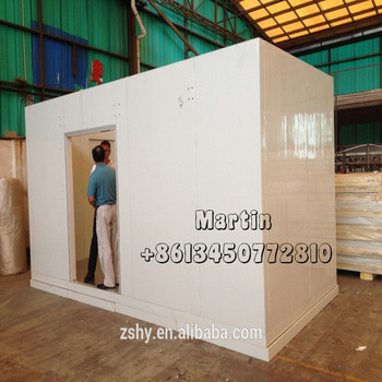 PU Freezer Room for frozen meat storage / Cold Room Equipment