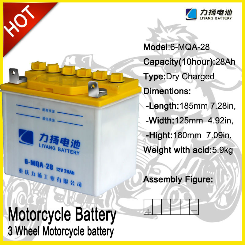 PEDICAB TRISHAW batteries BATTEY FROM DENEL BATTERY OF LIYANG INDUSTRY
