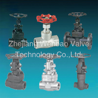 Stainless steel forged steel Threaded Gate valve drawing