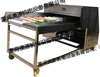 Cabbage root cutting machine/carrot root vegetale dicing