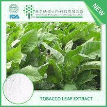 China Wholesale Natural Dried Natural Tobacco Leaf Extract Solanesol 98% with free sample
