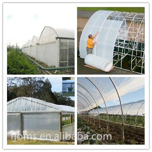 greenhouse film for sale philippines / white greenhouse film 6mil