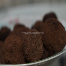 Fresh High Quality Tuber Aestivum Truffle