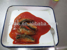 Canned Sardine in Tomato Sauce Ingredient Canned Sardine Fish Seafood