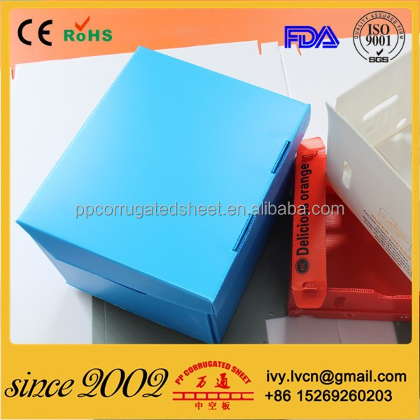 Plastic Corrugated Foldable Boxes With Lid For Packing and Shipping