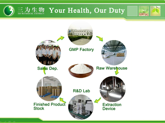 GMP Factory Grape seed extract 80%~95% Proanthocyanidin , 80% Polyphenols