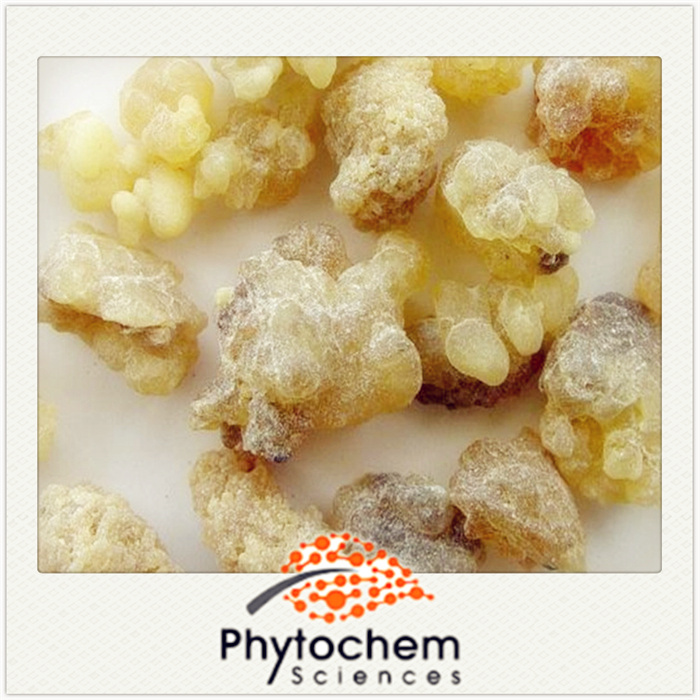 Boswellia Serrate Extract 90% 65% Boswellic Acid