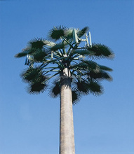 Camouflaged GSM Communication Artificial Natural Palm Trees Tower