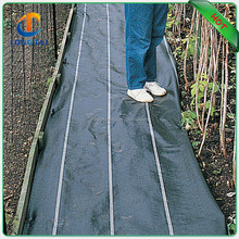 100% PP Woven Agriculture Ground Cover/plastic Mulch Film/Weed Mat