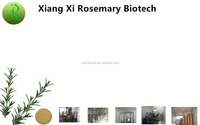 Professional Rosemary Extract Manufacturer Supply Carnosic Acid 60%