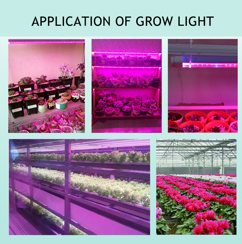 Seedling fill light 5050 plant red 660nm chips 5050 plant red led