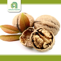 cheap walnut meat with great price