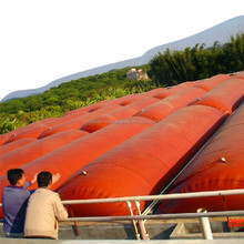 cow pig chicken manure dung biogas system for home balloon bag equipment
