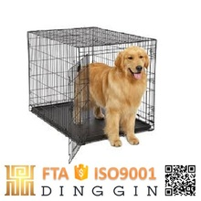 chrome dog trap cage singapore sale