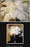White feathers for carnival costumes