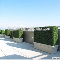 Fake Boxwood Hedge Panel,Artificial boxwood Mat for Sale Landscaping Home Garden Decoration