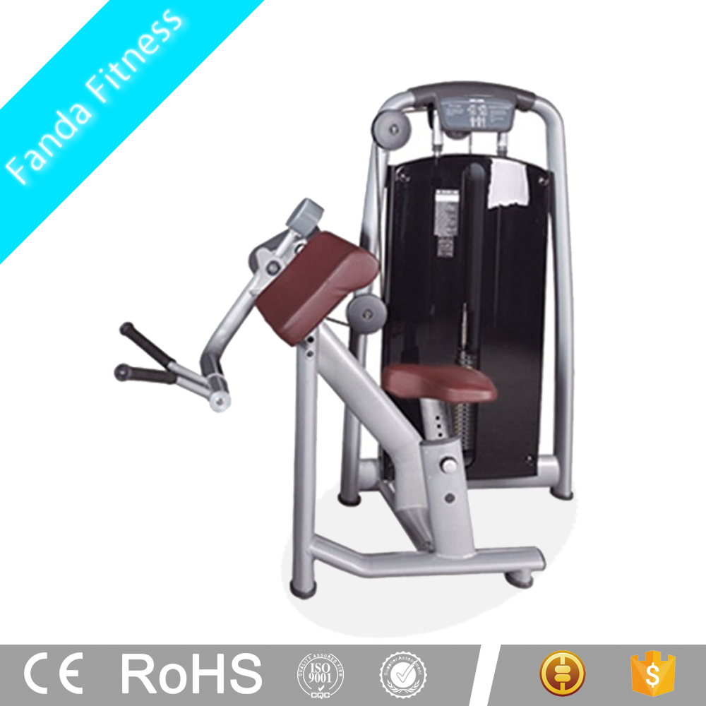 Professional Supplier Gym Equipment Biceps Triceps Machine