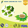 Pharmaceuticals Raw Materials Chinese Ivy Extract Treating Joint Pain and Back Pain with low price
