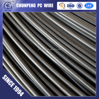 high quality best price 4mm pc steel wire