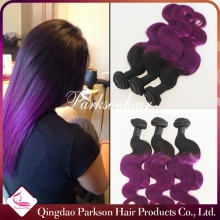 Peruvian Body Wave Hair 3 PCS Wholesale Unprocessed Human Ombre Purple Hair Weaves Peruvian Virgin Hair Extention