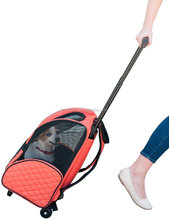 Outdoor Travel Mesh Pet Carrier Bag Wholesale Price Large Trolley Pet Carrier