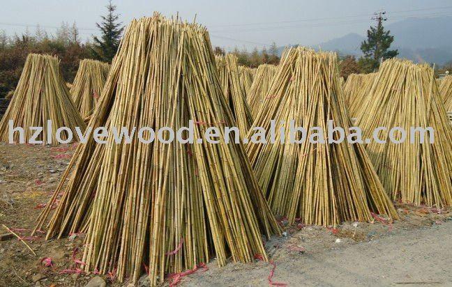 Bamb naturale di bamb palo canna di bamb bastone prezzo for Cannette di bambu prezzo