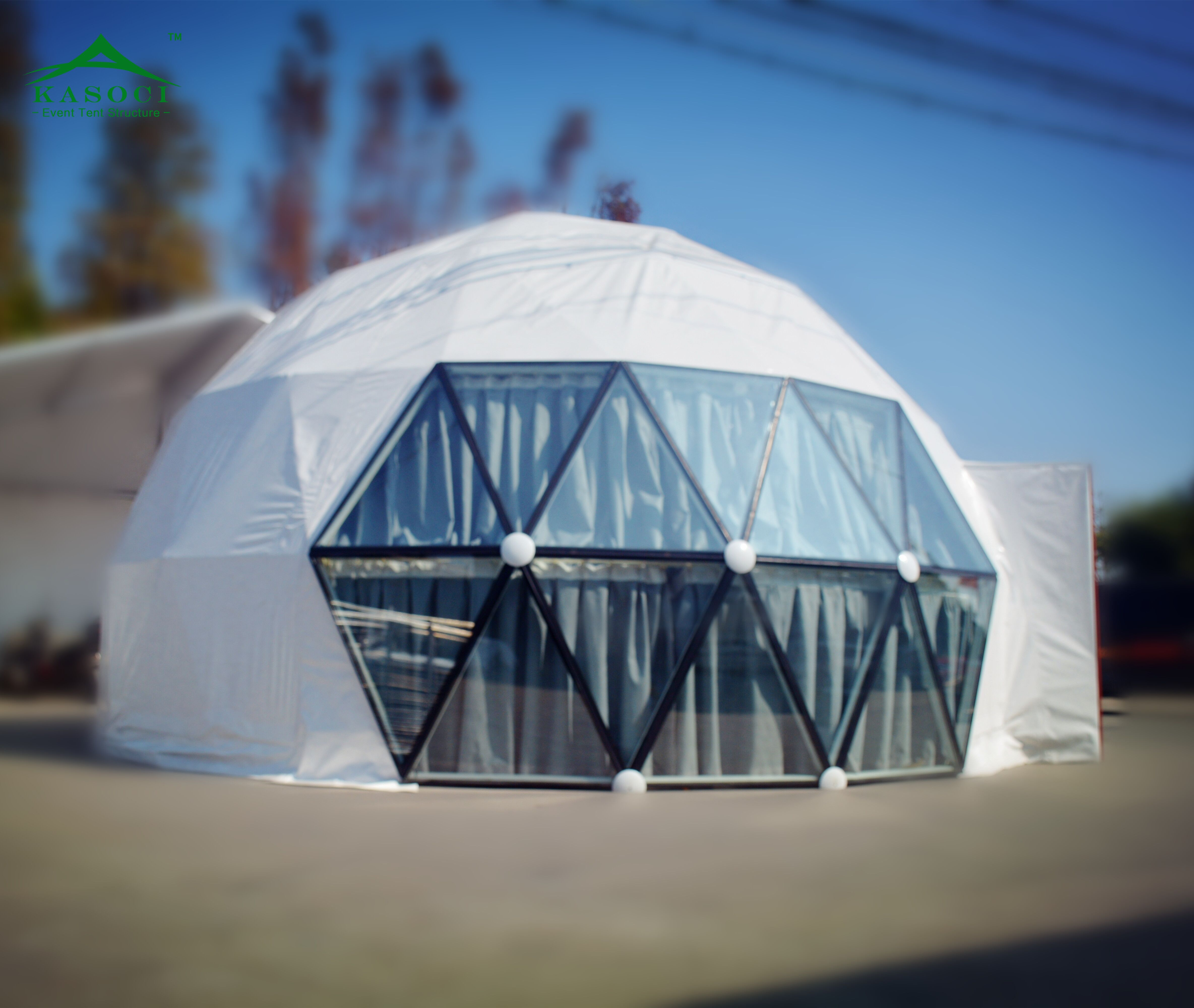 High Quality Professional Steel Kit Transparent Geodesic Garden Dome on
