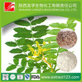 China Supplier Manufacturer sales 100% Natural water soluble boswellia serrata extract