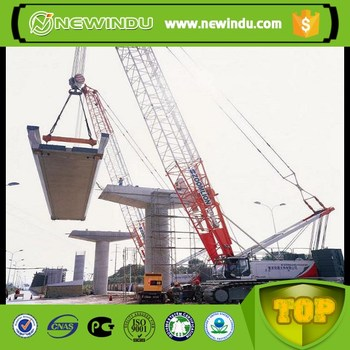 Chinese Hot Brand Zoomlion 260Ton Crawler Crane for Sale