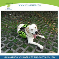 Lovoyager Pet Products Pet Backpack for Travel