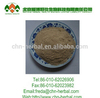 ISO Manufacturer Wholesale Angelica/Dong Quai extract Price