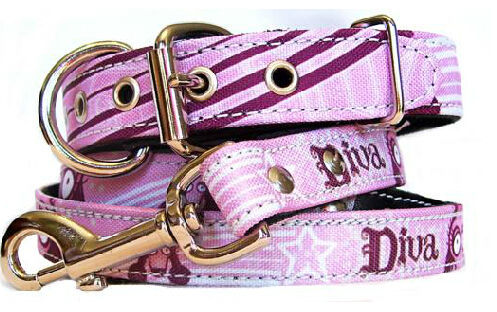 2014 NEW style PET product Chain Collar Dog Prices