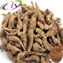 Pure RGNP/RGP Rehmannia Root Extract 30% Polysaccharides/catalpol CAS#: 11024-24-1/574-12-9